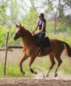 osztály lovaglás